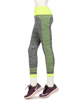 Compression Tights DGY/G