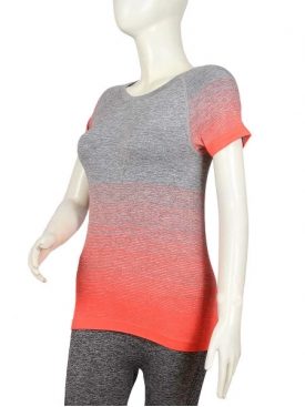Orange Stripe T-Shirt GY